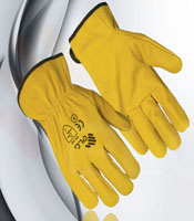 Gloves for driving graphic