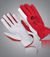 Worksafety Gloves