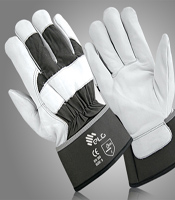 Winter Gloves -graphic
